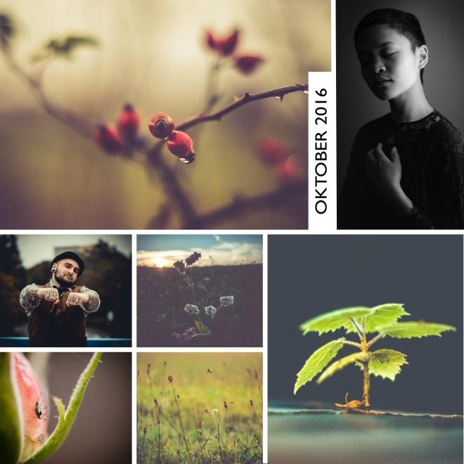 collage_oktober