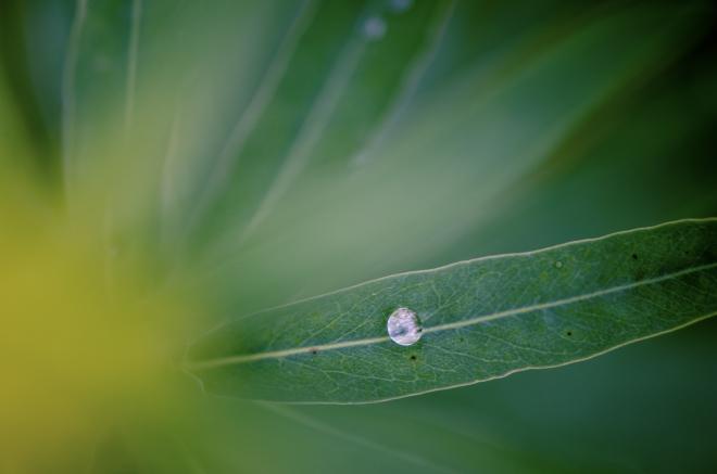 Zweitliebefotografie_Herbst_lonelyrider