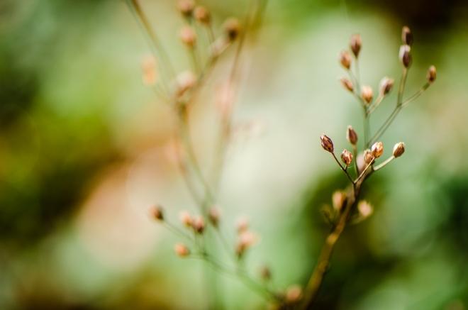 zweitliebefotografie-76415