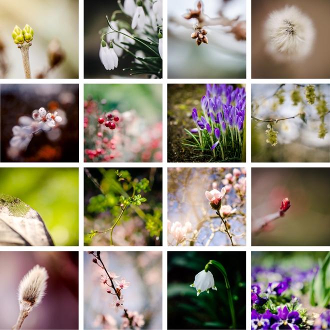 Frühlingsbunt